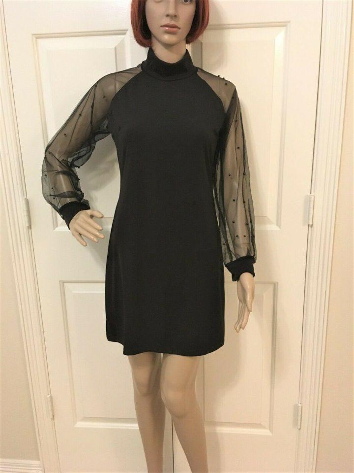 Women Sheer Long Sleeve Dress in 2 Sizes